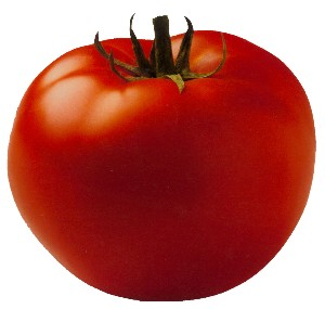 Top Tomato in Floyd?