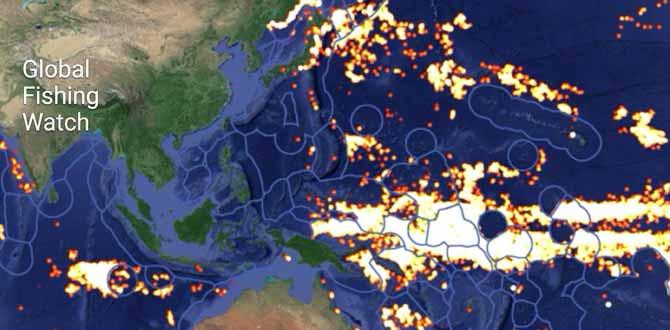 Empty Nets: Fisheries Future?