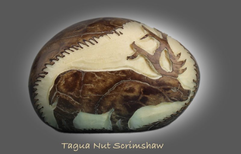 tagua nut scrimshaw